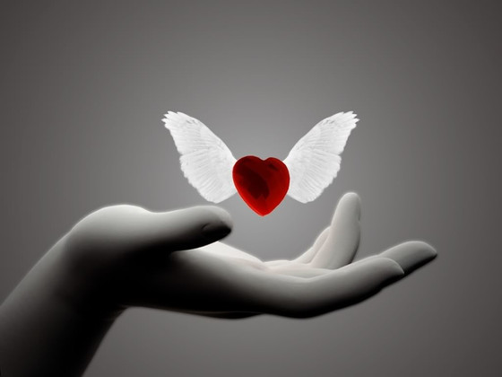 Your Heart Matters:  5 Ways to Set Yourself Free from MATTERS of the HEART