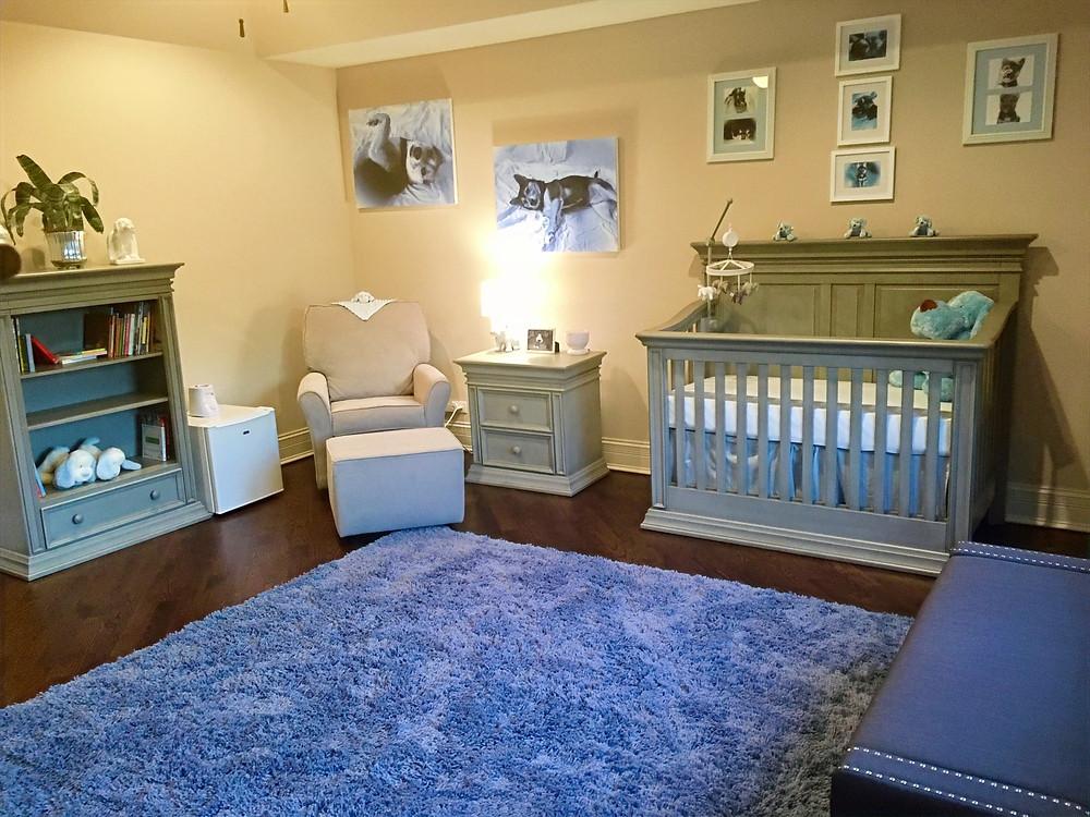 Baby Blue Boys Puppy Nursery
