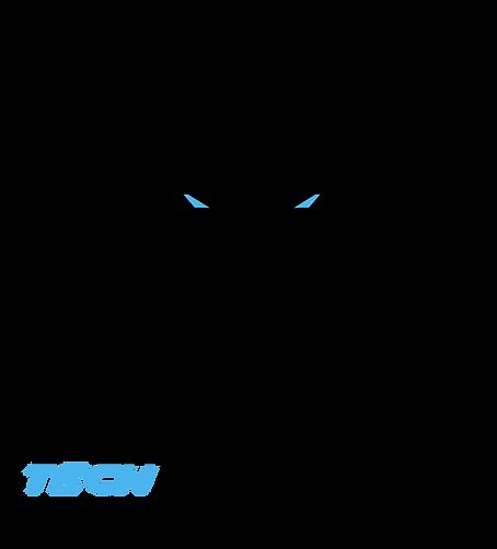 Tiger%20Tech%20Logo%20PNG_edited.png