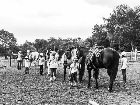 Eight B&W Cowgirls lined up.jpg