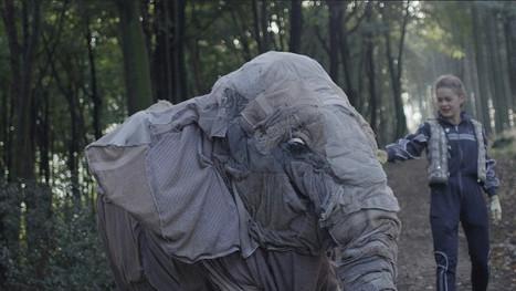 MY LITTLE ELEPHANT
