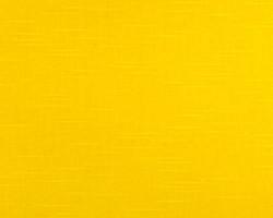 YW-Corn Yellow Solid