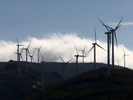 La energía verde amenaza con expulsar a ganaderos y agricultores de la España vaciada