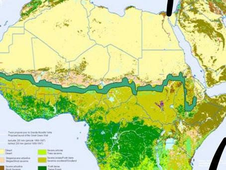 Empiezan A Construir La Gran Muralla Verde, El Muro Para Impedir El Avance Del Desierto