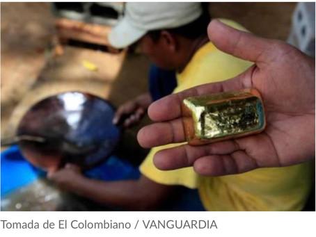 centralizar compra de oro para evitar minería ilegal