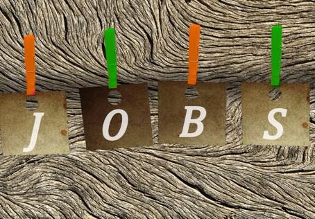 Oferta de empleo para Ingenerio en Universidad