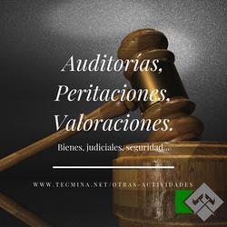 Auditorías, Peritaciones y Valoracionesd