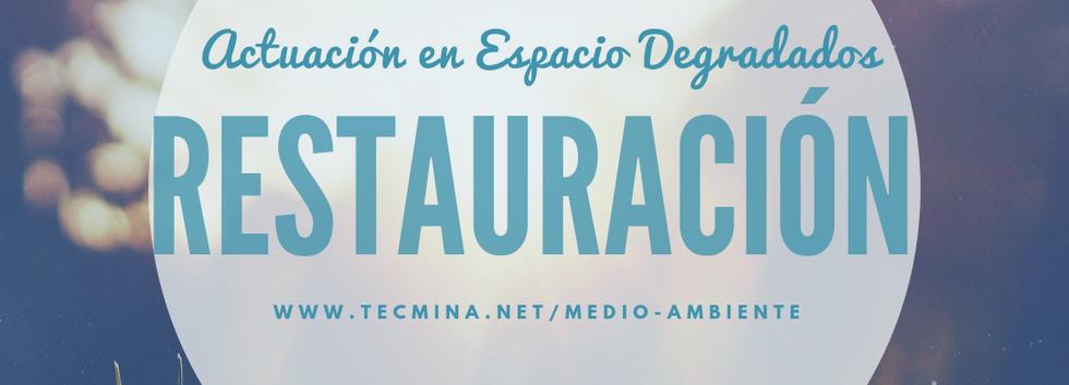 MEDIO_7_Restauración.png