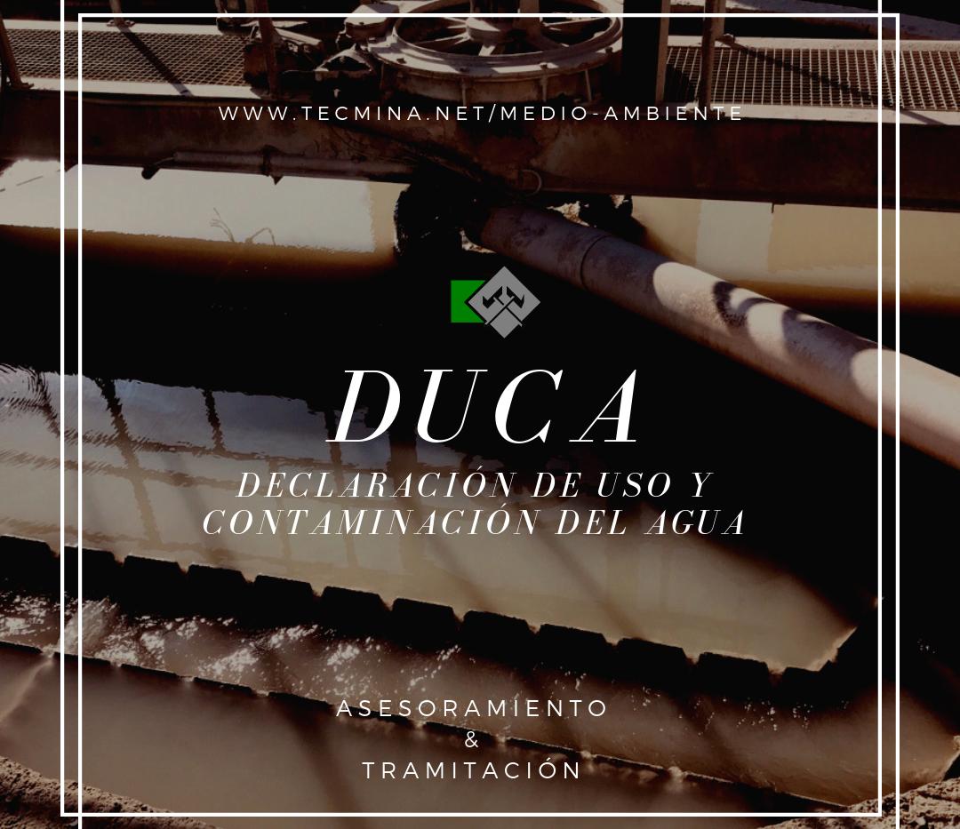 MEDIO 4 DUCA.png