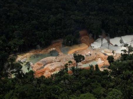 La Amazonia amenazada por la minería ilegal