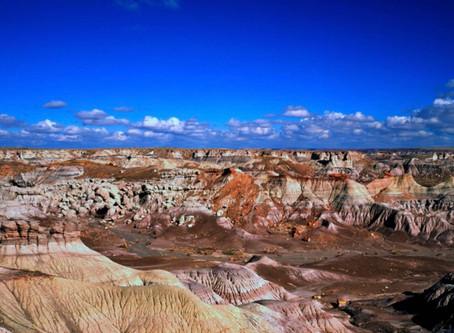 Un bosque de piedra en el oeste americano