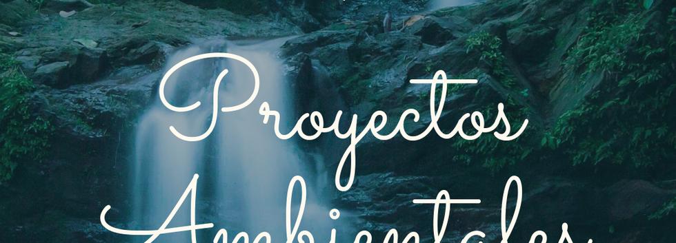 MEDIO 8 Proyectos Ambientales.png