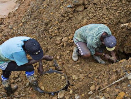 Recuperación del oro trae consigo explosión de minería ilegal