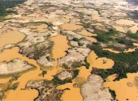 la minería ilegal está filtrando químicos tóxicos en al menos 30 ríos de la cuenca del Amazonas