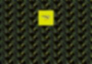 eliminatedgemtumbler(翅脈グリーンハナムグリ)-01.jpg