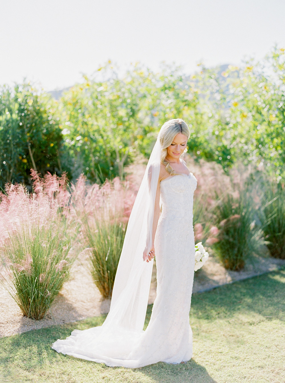 Andaz Scottsdale Wedding, Bridal Portrait