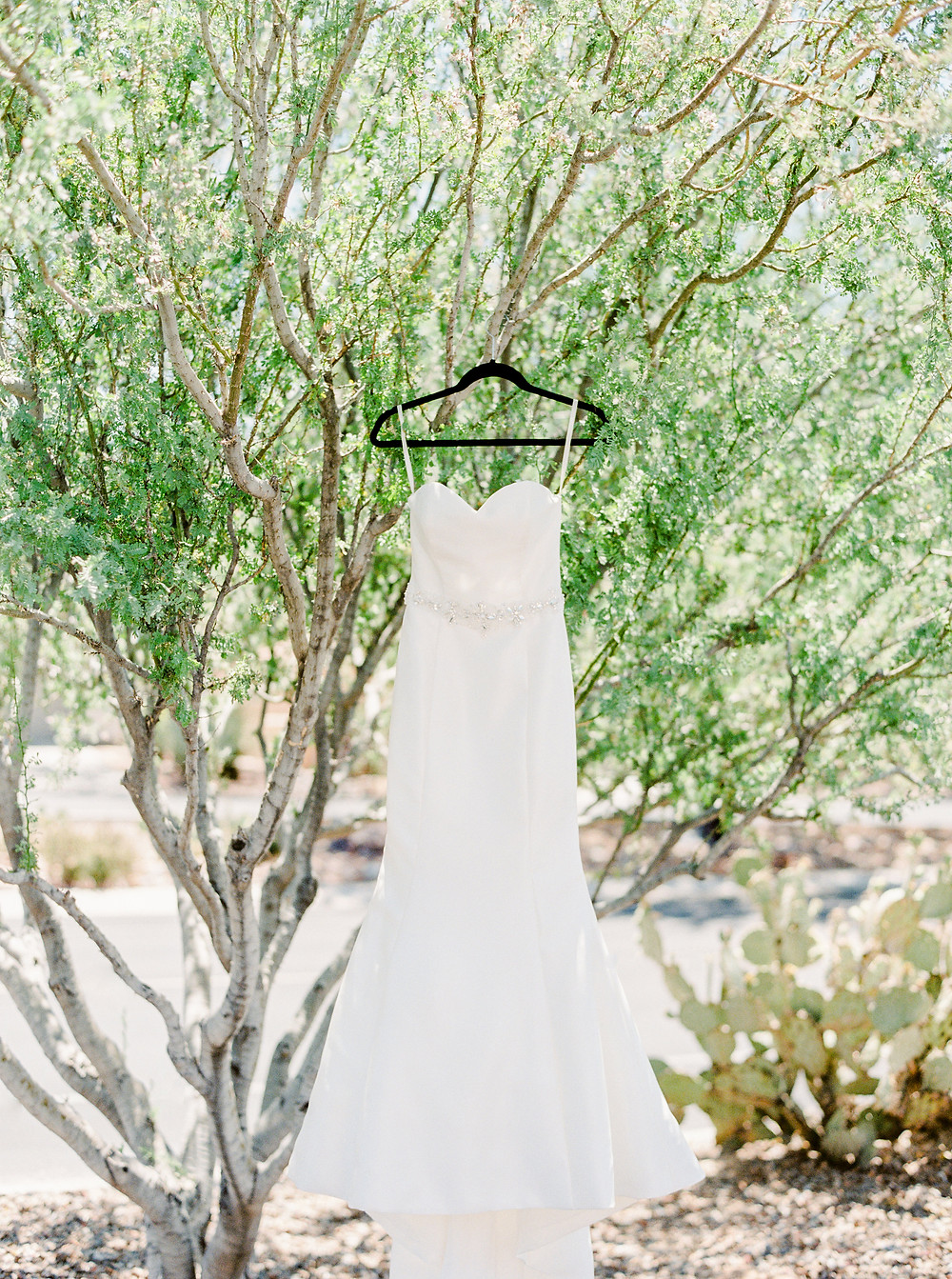 Ritz Carlton Dove Mountain Wedding, Details, Brides Dress