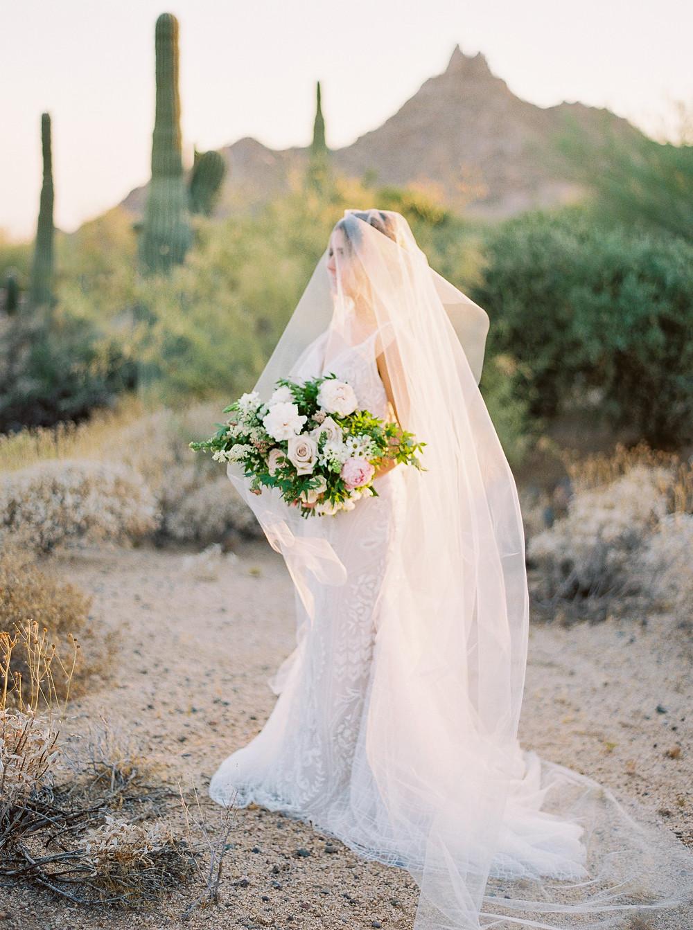 Four Seasons at Troon North in Scottsdale Arizona, Bridal Portrait