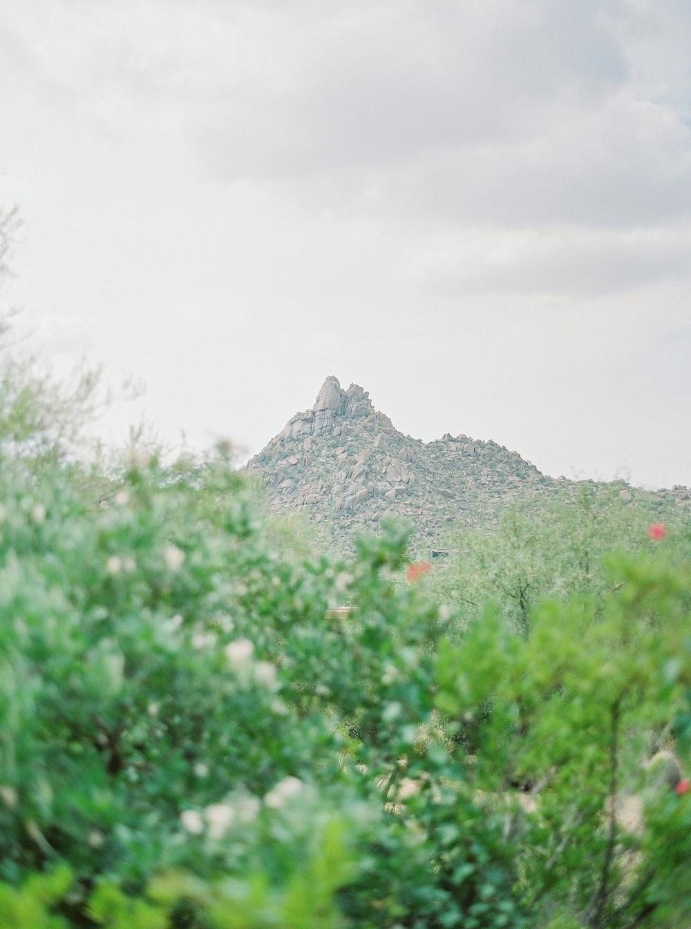 Scottsdale Four Seasons desert wedding  Pinnacle Peak