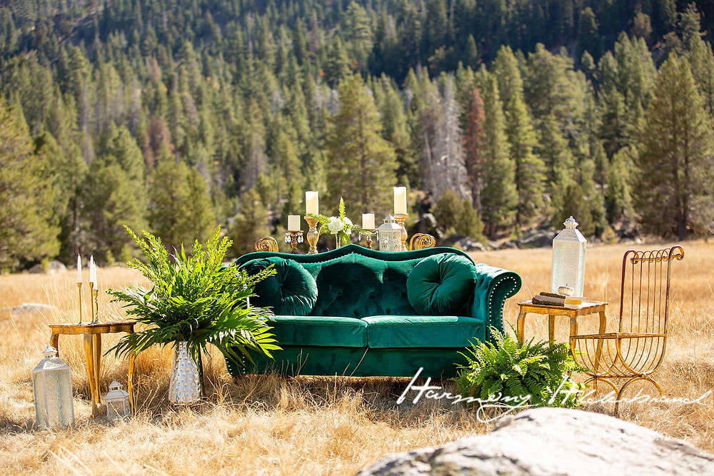 Botanical Look with Gold and Velvet Green Couch