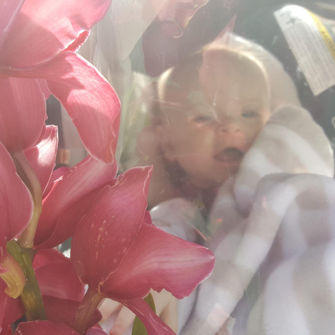 A-Floral-Affair-Flower-Box-Baby (1)