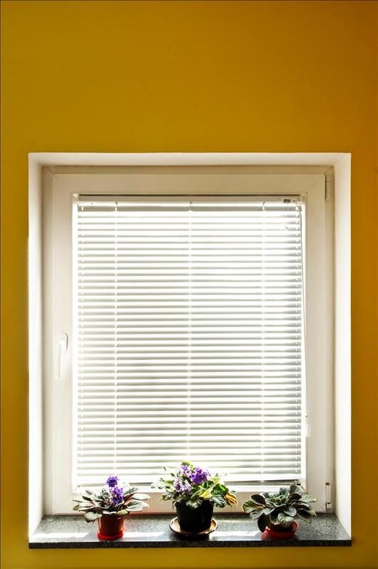 Window-Blinds-1390288.jpg