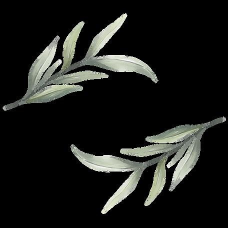 —Pngtree—elegant_watercolor_leaves_e