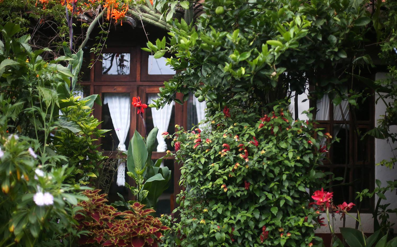 cottage-room-outside.jpg