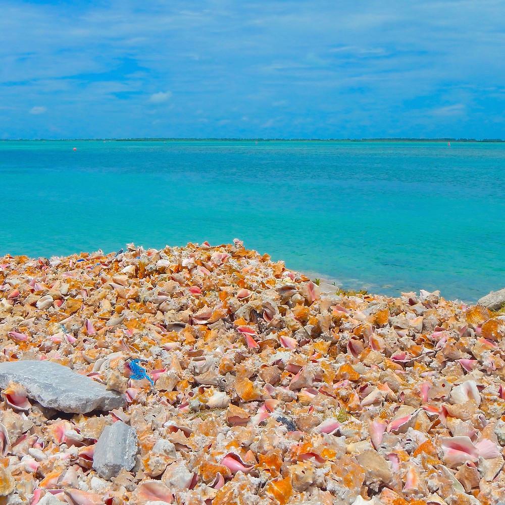 Bimini Bahamas getaway