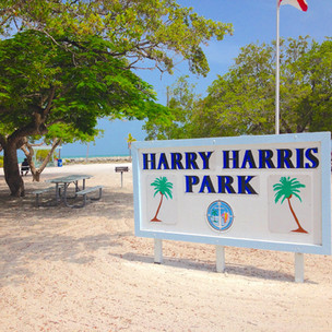 Florida Keys beaches? Try Henry Harris Park