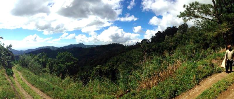 Blue Mountains Jamaica view