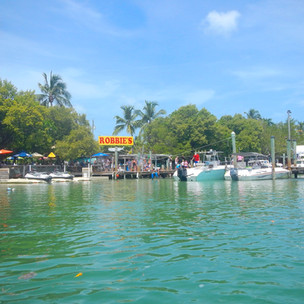 Feeding the tarpon in the Florida Keys: Robbie's of Islamorada