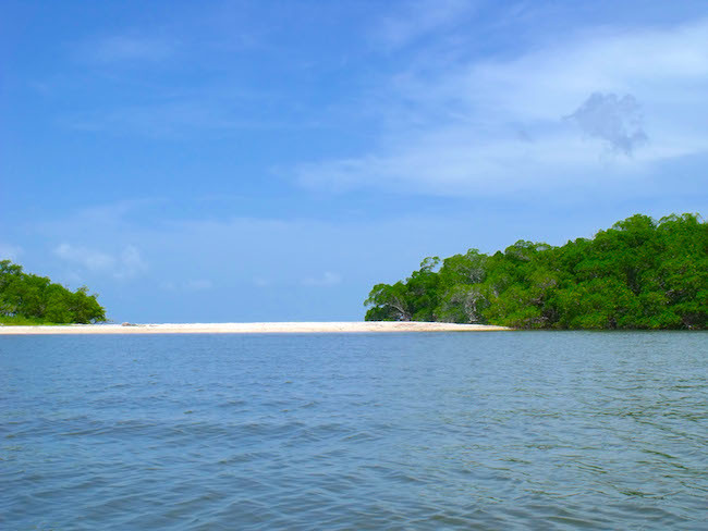 Jewel Key Everglades
