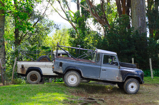 Land Rovers in the Blue Mountains