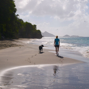 Discovering a Carriacou beach: the hidden beauty of Sparrow Bay