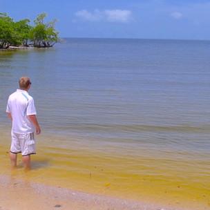 A Ten Thousand Islands Adventure: Kayaking to Jewel Key
