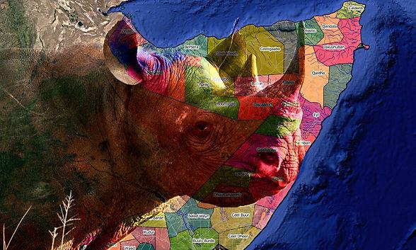 africa-onu-RINO-Copia-2048x1229.jpg