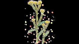 Vira Vira 1920 x 1080.png