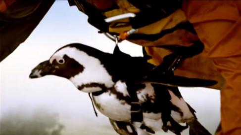 Washington Lottery - Birds