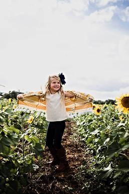 sunflowers-4.jpg