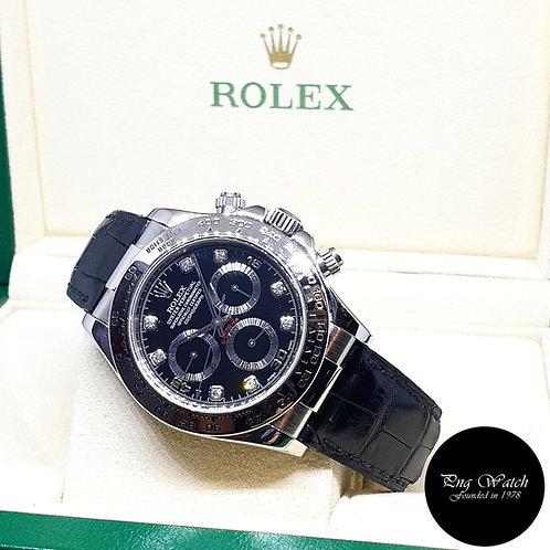 Rolex 18K White Gold Black Diamonds Daytona REF: 116519
