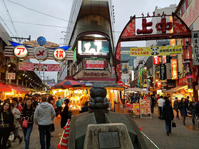 All about Tokyo Travel