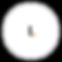logo livv.png