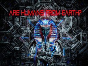 Humans are not from Earth