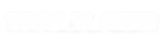 BRAVE Trailblazer LOGO white-01.png