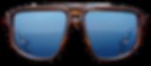 BRAVE Vision SUNSEEKER-whisky-front.png