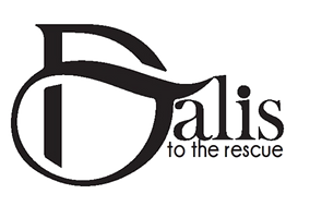 DTTR Logo_edited_edited.png