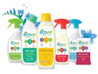 eco cleaning service