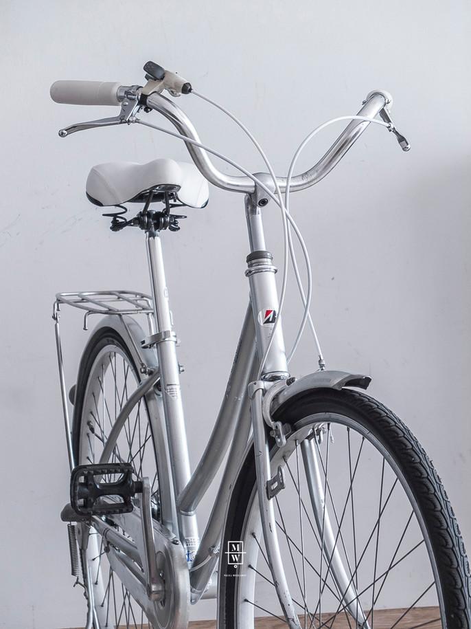 rower_wintage_color11.jpg