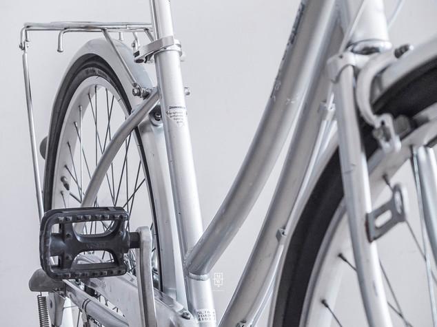 rower_wintage_color14.jpg